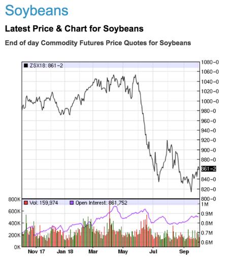 近一年美國大豆的期貨價格趨勢圖(資料來源:Nasdaq)(圖/截自台灣事實查核中心)